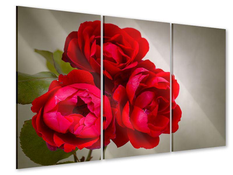 Acrylglasbild 3-teilig Drei rote Rosen