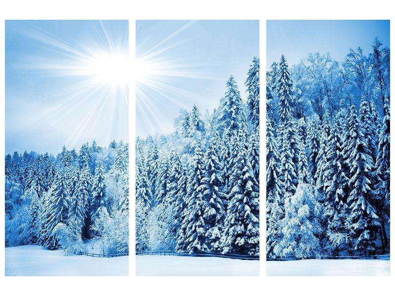 Acrylglasbild 3-teilig Wintermärchen