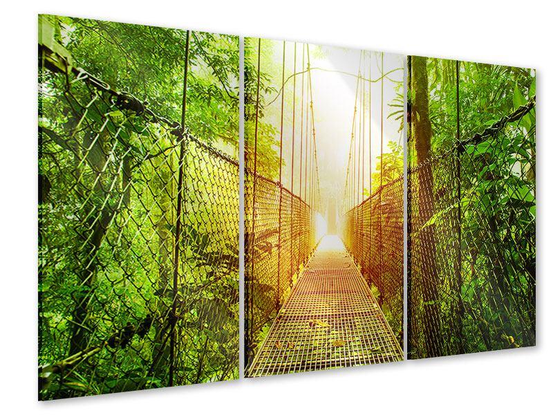 Acrylglasbild 3-teilig Hängebrücke