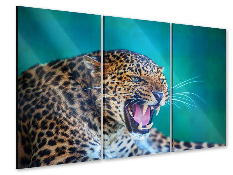 Acrylglasbild 3-teilig Achtung Leopard