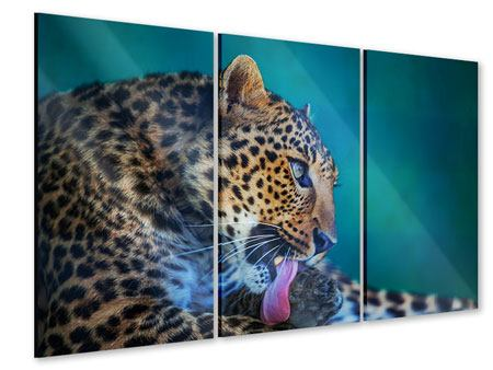 Acrylglasbild 3-teilig Leopard XL