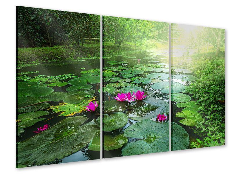 Acrylglasbild 3-teilig Gartenteich