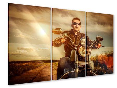 Acrylglasbild 3-teilig Der Coole Biker