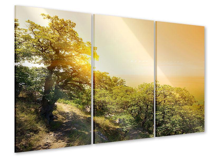 Acrylglasbild 3-teilig Sonnenuntergang in der Natur