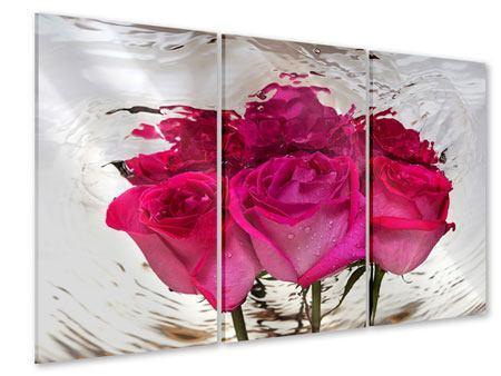Acrylglasbild 3-teilig Die Rosenspiegelung