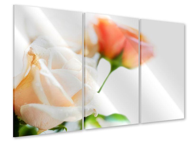 Acrylglasbild 3-teilig Rosenperspektive