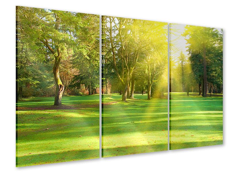 Acrylglasbild 3-teilig Im Park