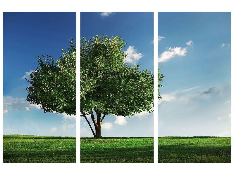 Acrylglasbild 3-teilig Baum im Grün
