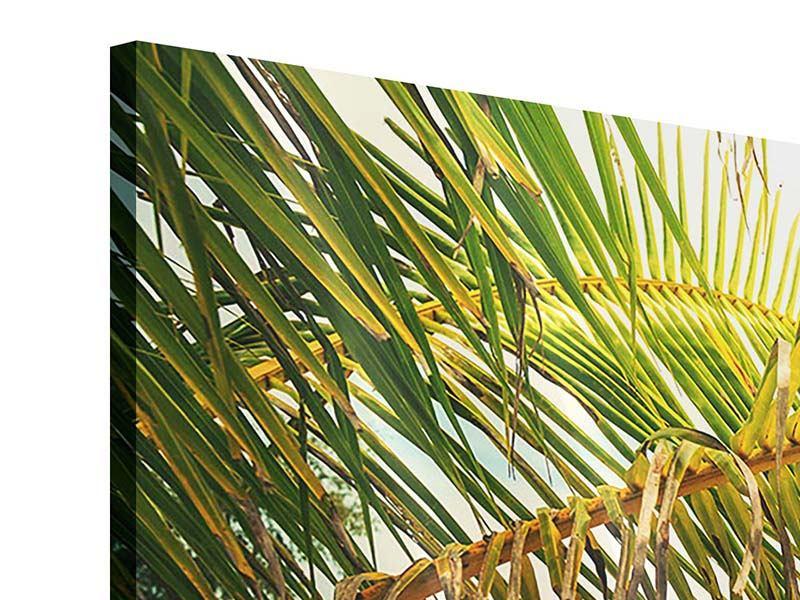 Acrylglasbild 3-teilig Ab in die Hängematte