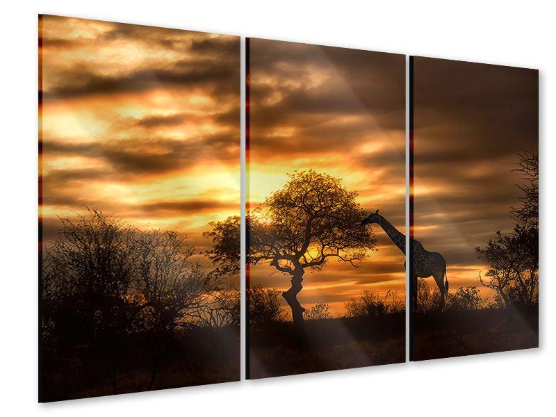 Acrylglasbild 3-teilig African Dreams