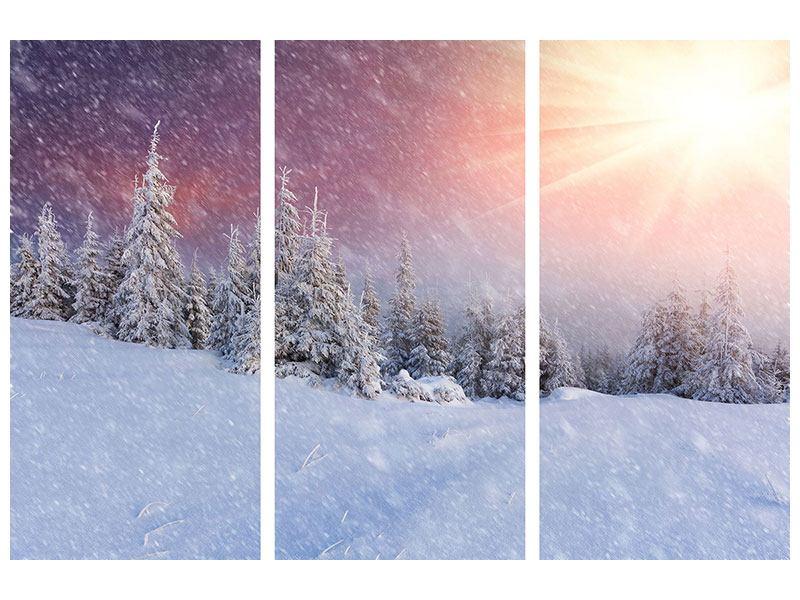 Acrylglasbild 3-teilig Mystischer Schneesturm