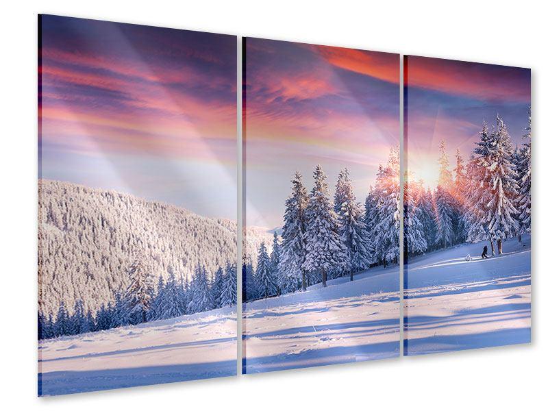 Acrylglasbild 3-teilig Winterlandschaft