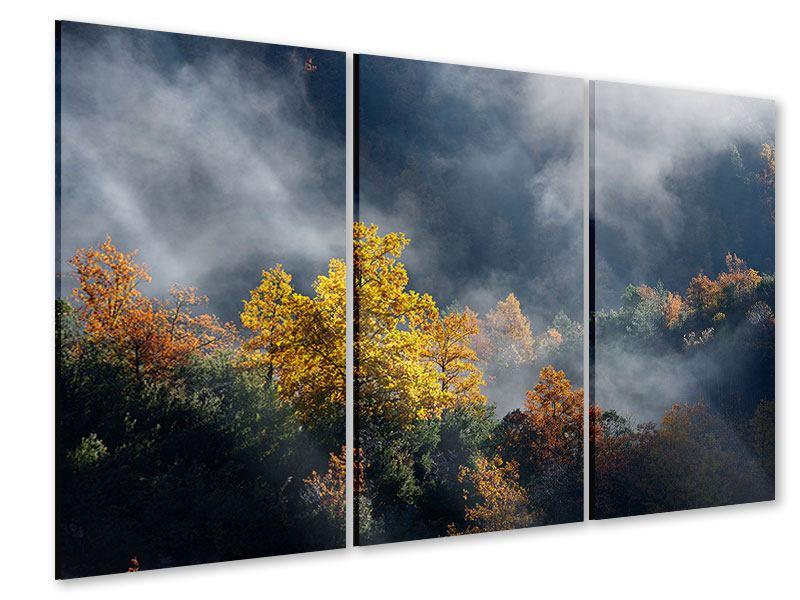 Acrylglasbild 3-teilig Mondscheinwald