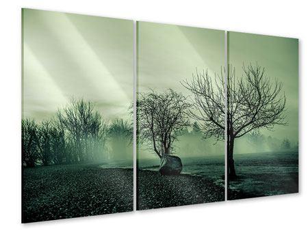 Acrylglasbild 3-teilig Der Auwald im Nebel