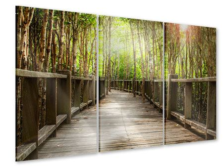 Acrylglasbild 3-teilig Hölzerne Brücke