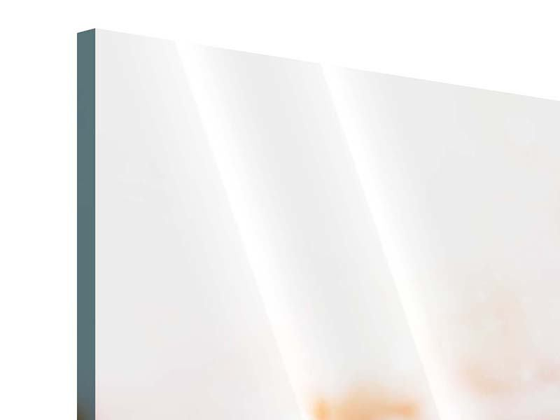 Acrylglasbild 3-teilig Lotus-Duo