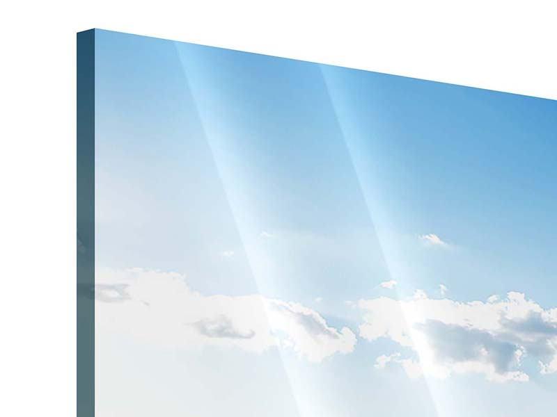 Acrylglasbild 3-teilig Die Möwen und das Meer