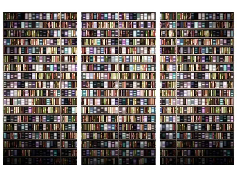 Acrylglasbild 3-teilig Bücherregal