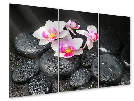 Acrylglasbild 3-teilig Feng-Shui-Orchidee Zen