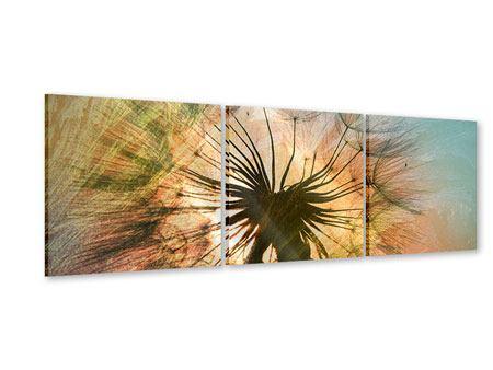 Panorama Acrylglasbild 3-teilig XXL Pusteblume