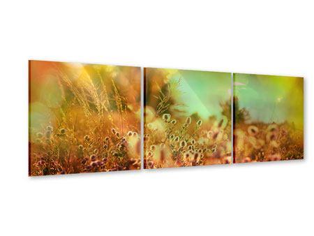 Panorama Acrylglasbild 3-teilig Blumenwiese in der Abenddämmerung