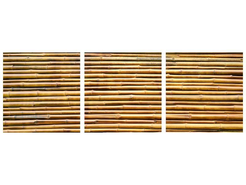 Panorama Acrylglasbild 3-teilig Bambus