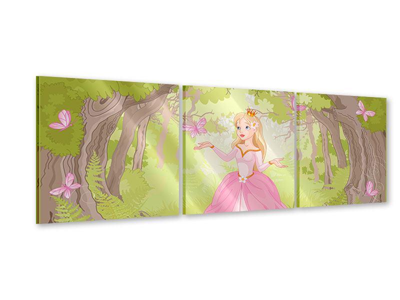 Panorama Acrylglasbild 3-teilig Princess