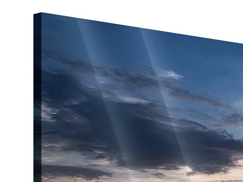 Panorama Acrylglasbild 3-teilig Ein Feld von Sonnenblumen