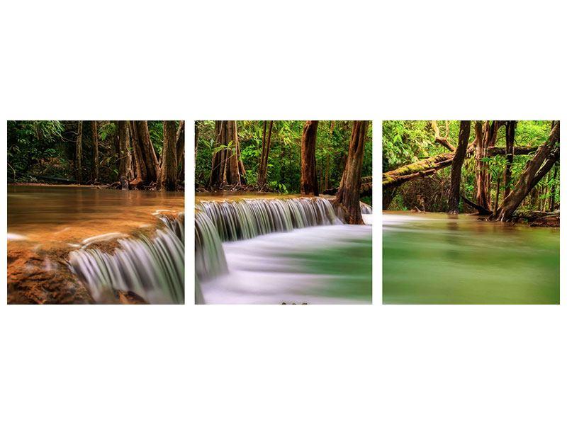 Panorama Acrylglasbild 3-teilig Deep Forest