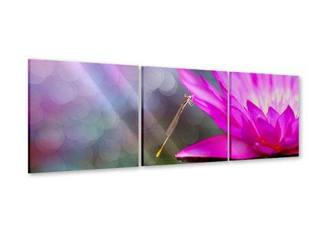 Panorama Acrylglasbild 3-teilig Besuch bei der Seerose