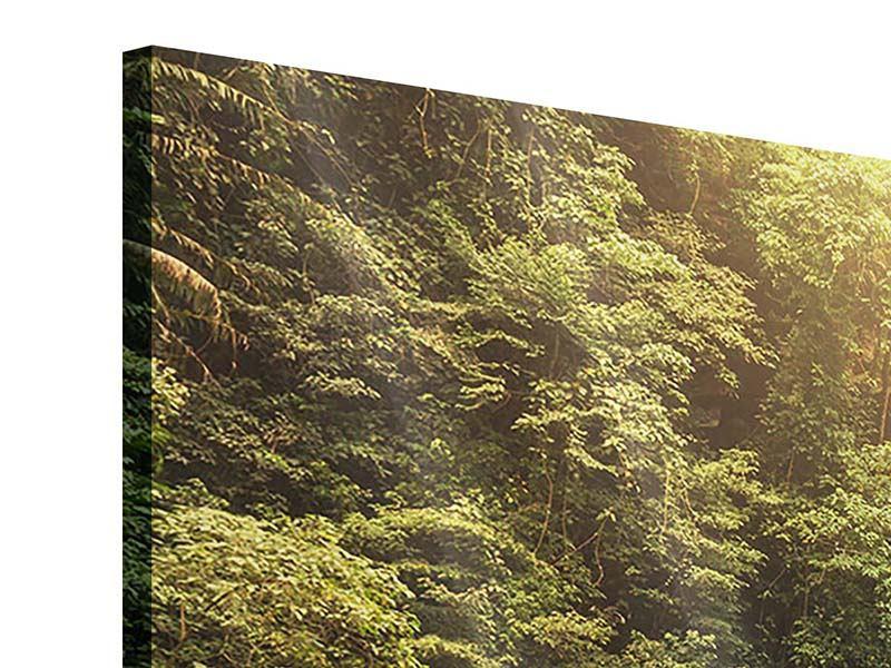 Panorama Acrylglasbild 3-teilig Wasserfall Bali
