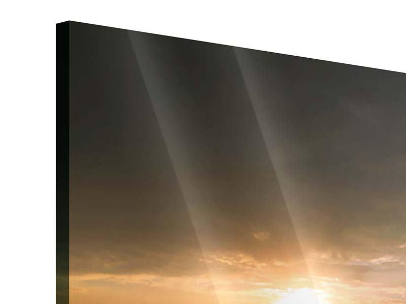 Panorama Acrylglasbild 3-teilig Sonnenblumen im Lichtspiel