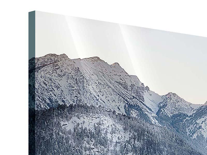 Panorama Acrylglasbild 3-teilig Schloss Neuschwanstein im Ammergebierge