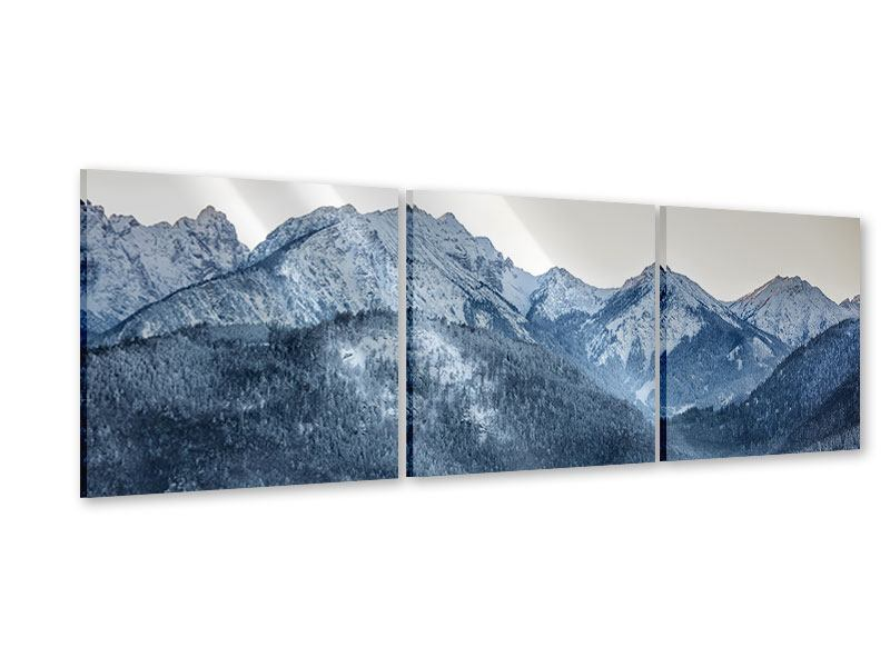 Panorama Acrylglasbild 3-teilig Schwarzweissfotografie Berge