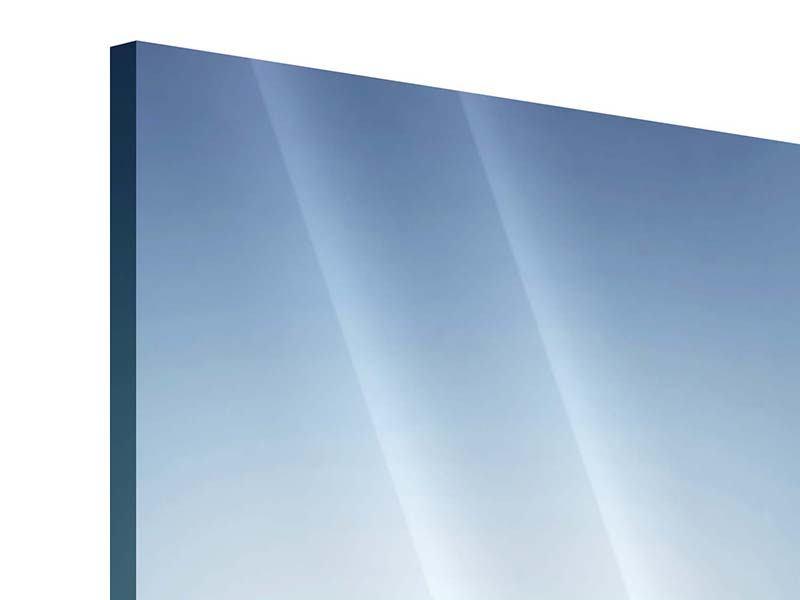 Panorama Acrylglasbild 3-teilig Der Tropfen