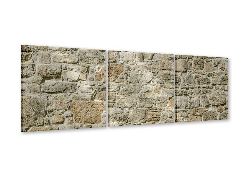 Panorama Acrylglasbild 3-teilig Naturmauer