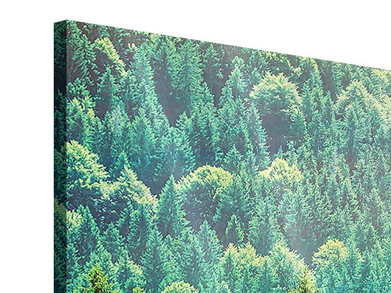 Panorama Acrylglasbild 3-teilig Der Waldhügel