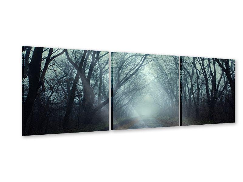Panorama Acrylglasbild 3-teilig Nebelwald