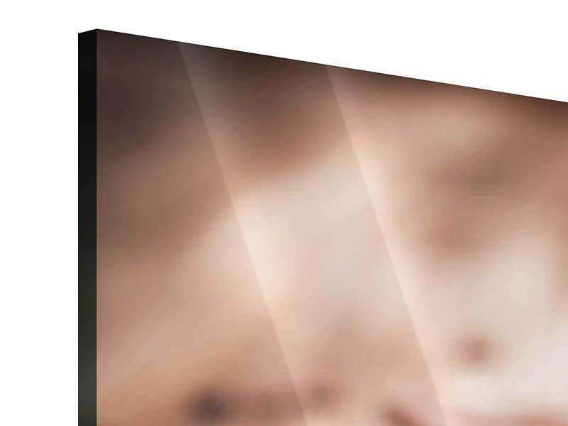 Panorama Acrylglasbild 3-teilig Tiramisu