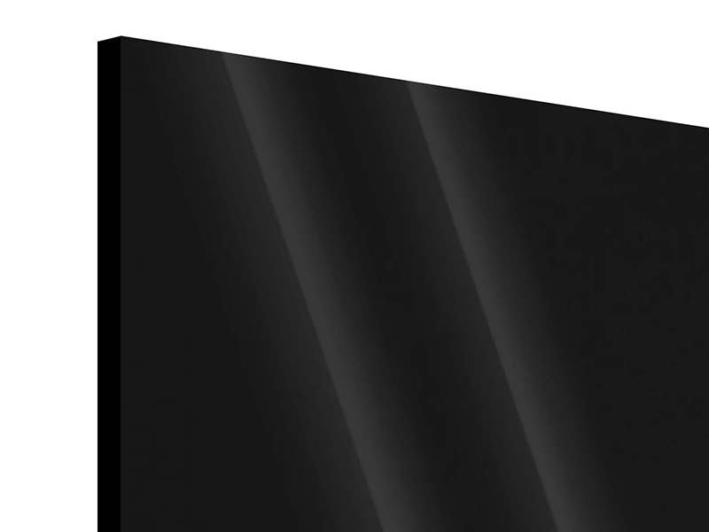 Panorama Acrylglasbild 3-teilig Nude
