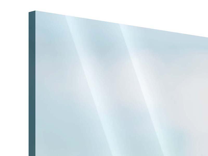 Panorama Acrylglasbild 3-teilig Die Hortensie