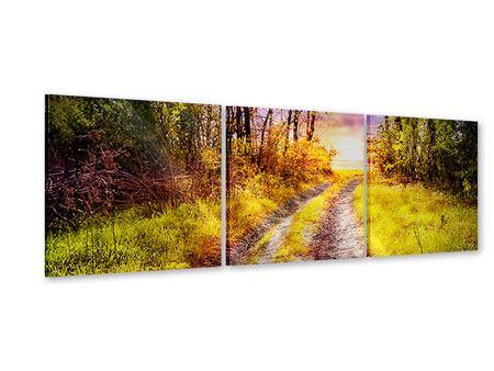 Panorama Acrylglasbild 3-teilig Der Waldpfad