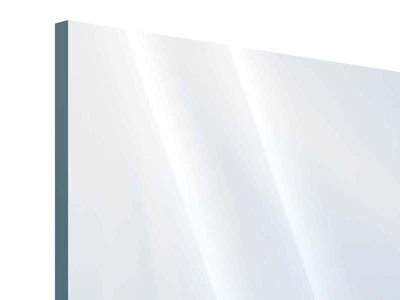 Panorama Acrylglasbild 3-teilig Der Löwenzahn im Sonnenstrahl