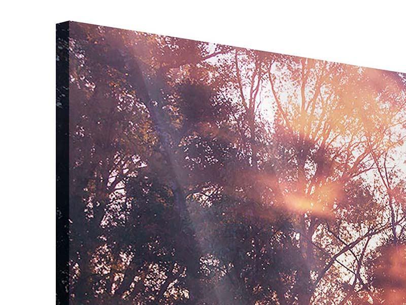 Panorama Acrylglasbild 3-teilig Die Waldspiegelung