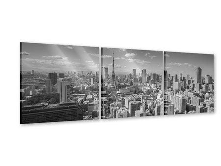 Panorama Acrylglasbild 3-teilig Tokio