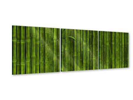 Panorama Acrylglasbild 3-teilig Wasserspiegelung Bambus