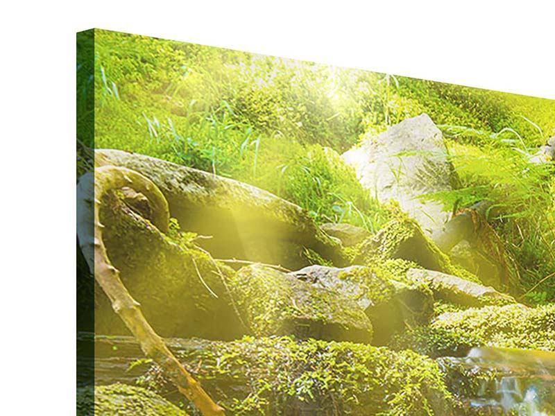 Panorama Acrylglasbild 3-teilig Schönheit des fallenden Wassers