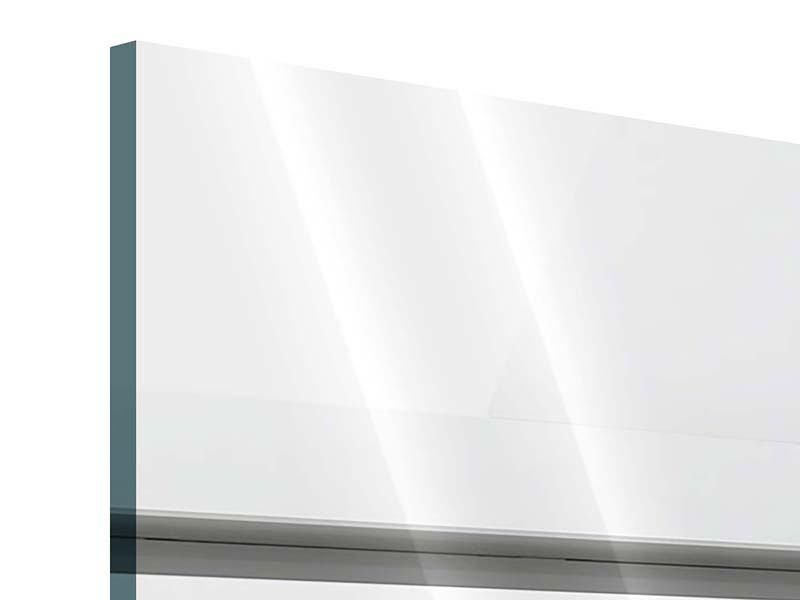 Panorama Acrylglasbild 3-teilig Weisser Flügel