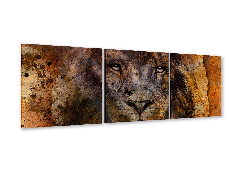 Panorama Acrylglasbild 3-teilig Portrait eines Löwen