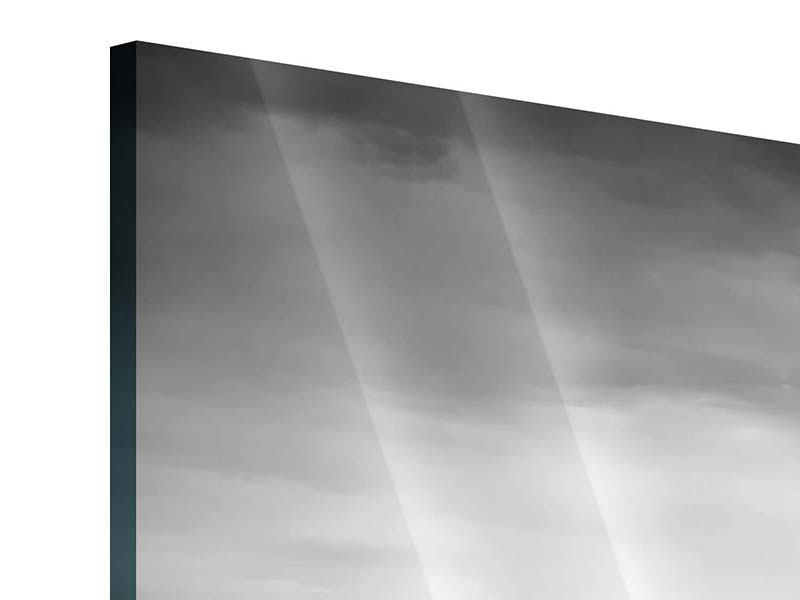 Panorama Acrylglasbild 3-teilig Skyline Schwarzweissfotografie New York